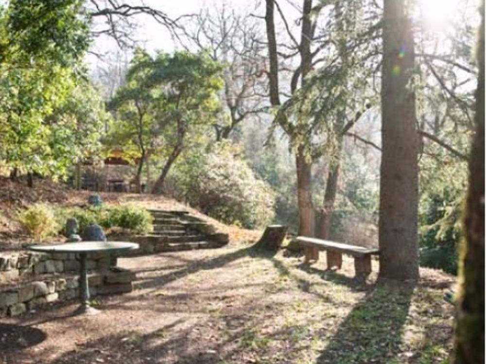 Fiesole terrazzo e giardino Porzione Villa - Veduta del Parco con il piccolo Anfiteatro