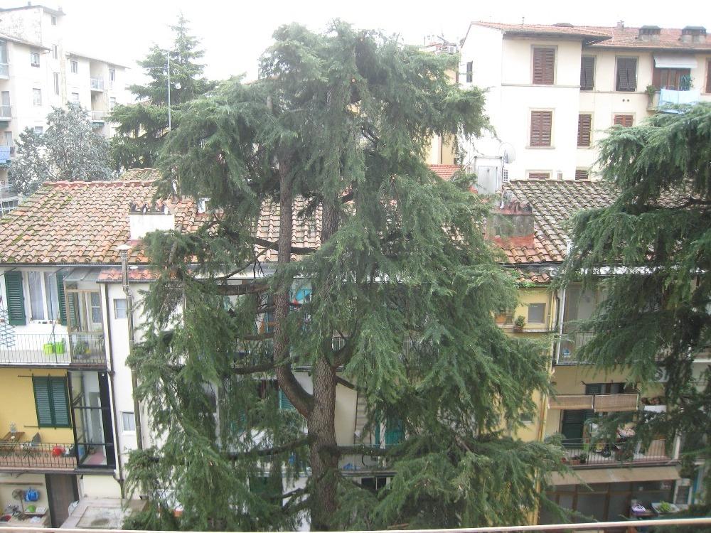 Vittorio Emanuele - Vista